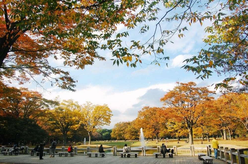 Taman Yogoi Koen