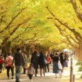 7 Tempat Wisata Musim Gugur Terbaik di Tokyo yang Wajib Anda Kunjungi